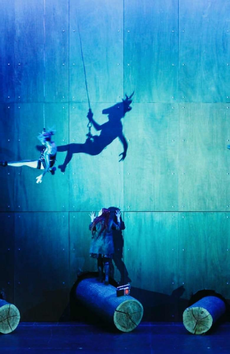 Performer elevating, flying people and aerial arts